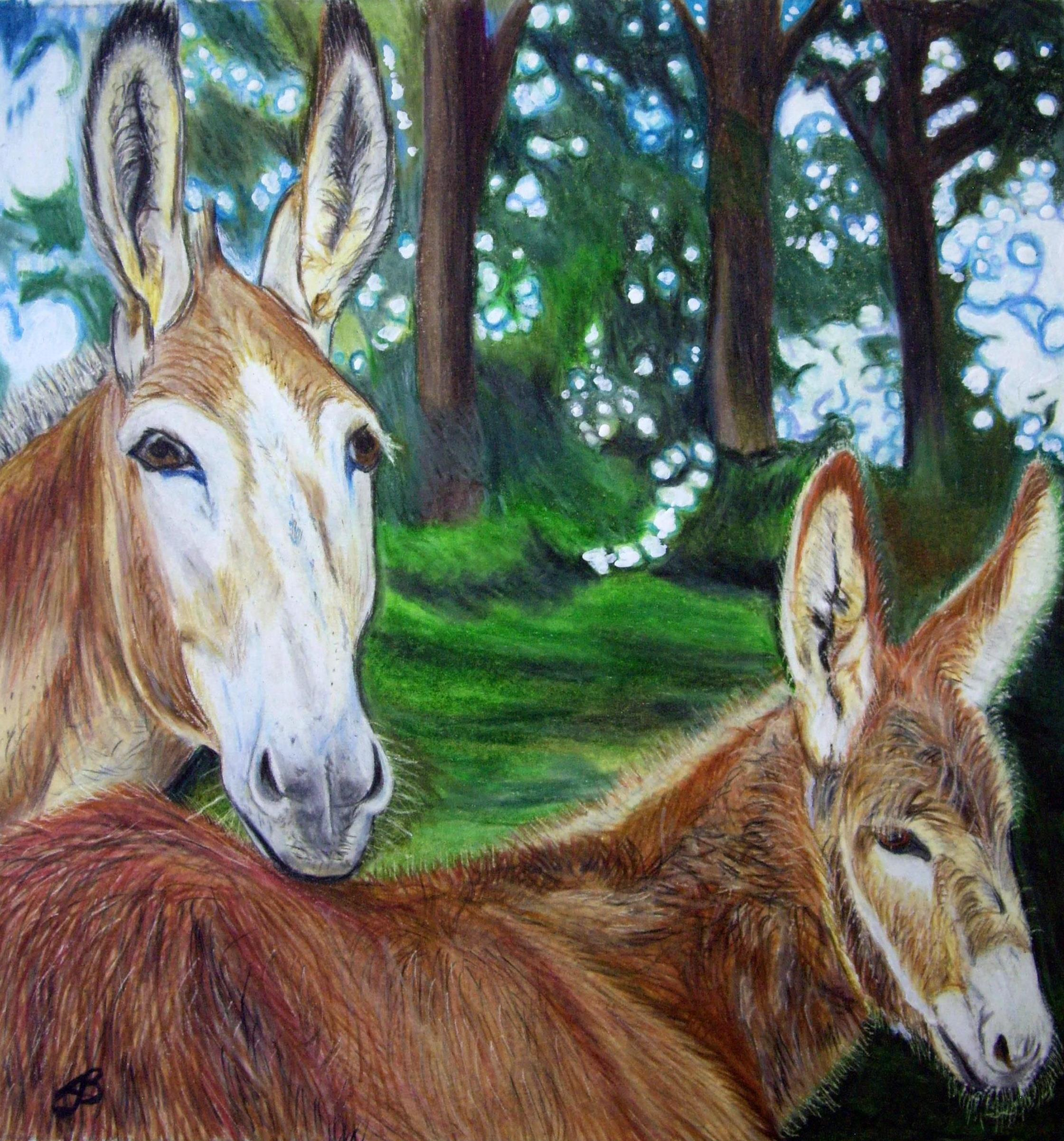 Donkey and Foal in Color Pencil