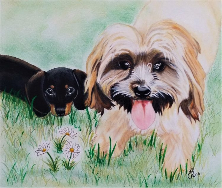 Commissioned Artwork - two puppies