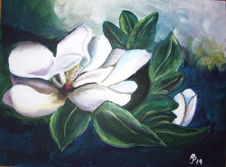 Magnolia Bloom in Acrylic